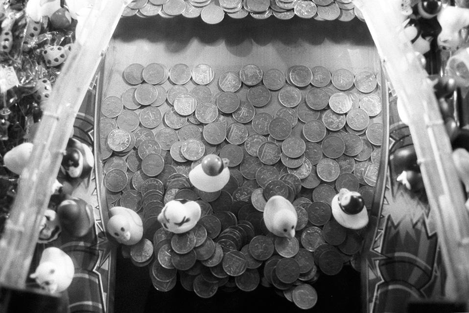 Five Ducks & Coins